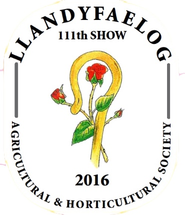 Llandyfaelog 2016 show logo